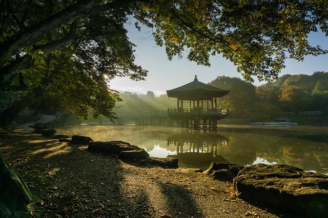 Ukimido Autumn Morning