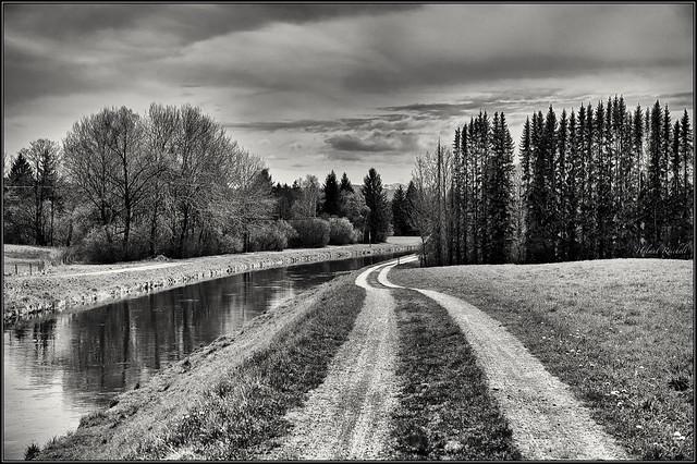 Der Weg am Kanal (sw)