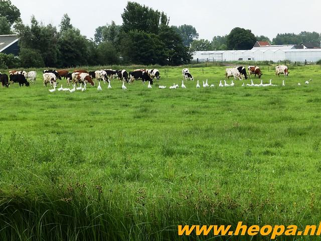 2016-06-17 Plus 4 Daagse Alkmaar 25 Km  (18)