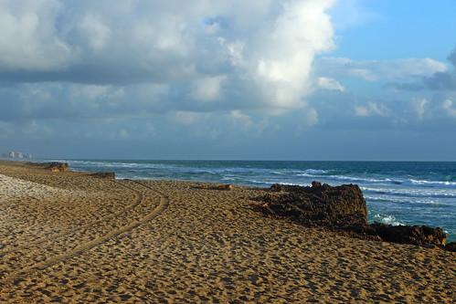 beach lady sand florida turtle tracks stuart atv hutchinsonisland turtlelady