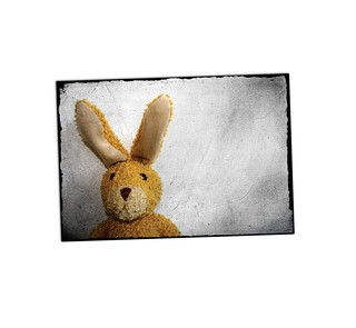 Berliner Hase A07
