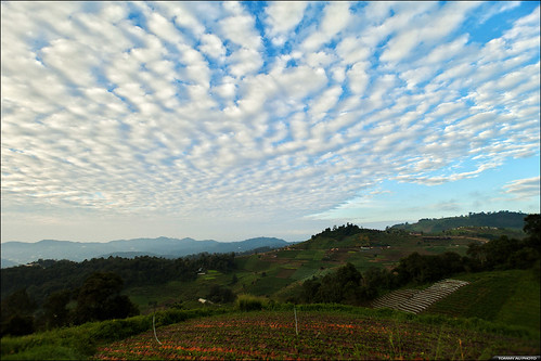 doimoncham moncham terracefields farmfields viewpoint clouds blue sky mountains outdoor chiangmai thailand