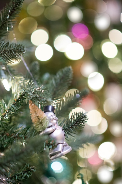 Frederik Meijer Gardens Holiday Traditions 2016