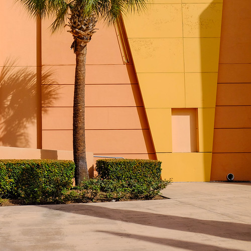 closeup houston landscapeurban lines palm shadow shadows square texas wall x100 yellow x100s pastels