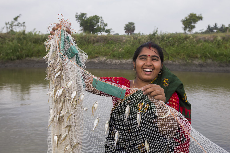 A woman with fish caught using gill net in Bangladesh. Photo by Md. Masudur Rahaman/WorldFish.