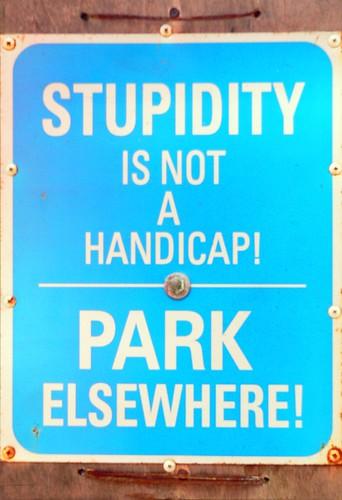 stupidity   by Leonard J Matthews