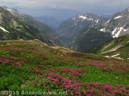 Views from Sahale Arm, North Cascades National Park, Washington