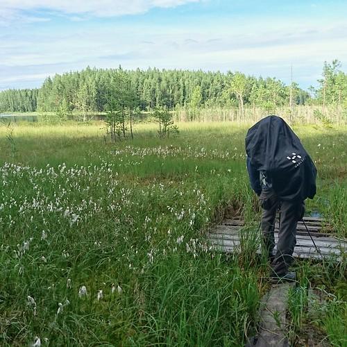 Photographer on a nature trek. Joutsijärvi, Kullaa, Finland | by anywhereism