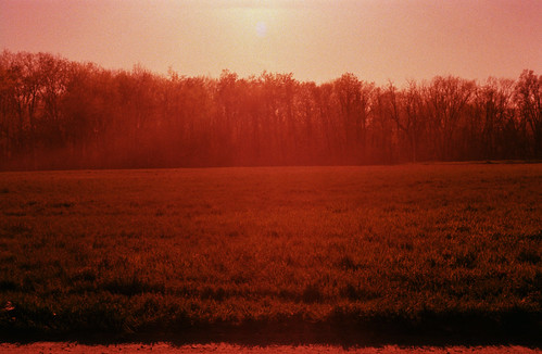 light film analog 35mm xpro crossprocessed grain meadows pentaxk1000 dreamy expired westernmass sensia100 magiclight