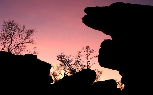 Kakadu Sunset Silhouette