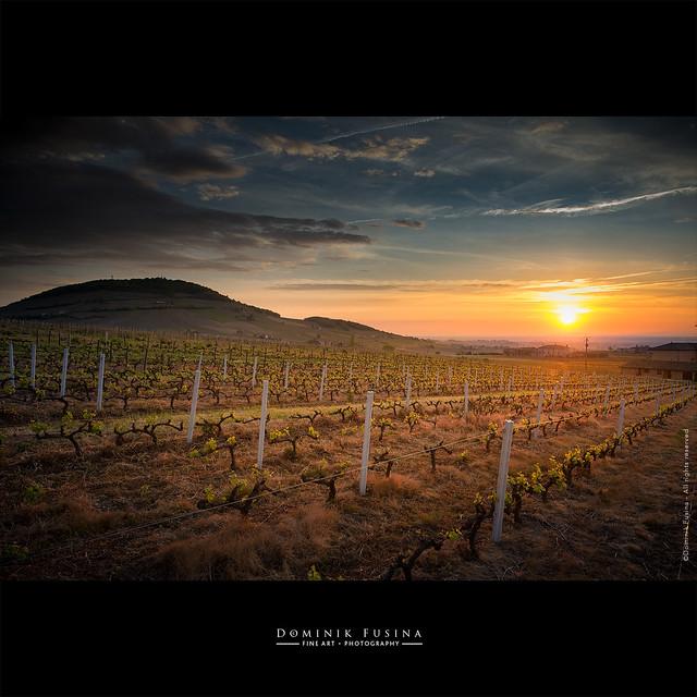 Mt-Brouilly Sunrise [EXPLORED]