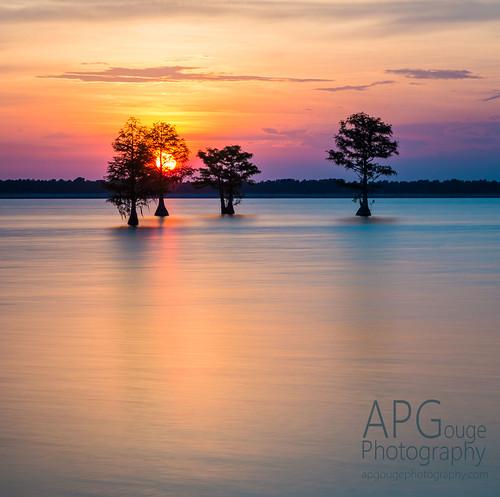 sun sunset water lake moultrie southcarolina south sc carolina cypress lightroom reflection orange blue shiloette clouds