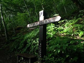 鳳凰山 ドンドコ沢 南精進ヶ滝分岐   by ichitakabridge