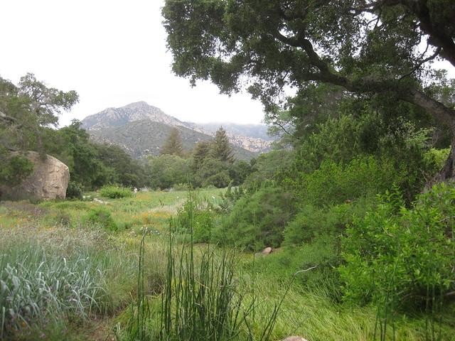 IMG_2694 Santa Barbara Botanic garden art