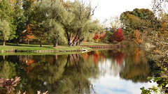 Mill pond in Northville, Michigan