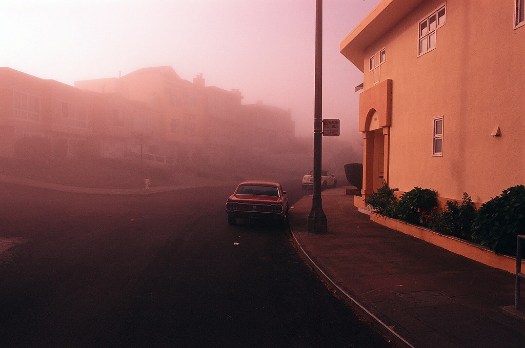 In a soft pink morning light. (Pink Fog #1)