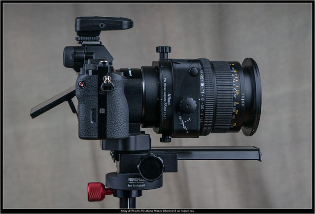 Sony A7R with PC Micro Nikkor 85mm/2.8 on macro rail