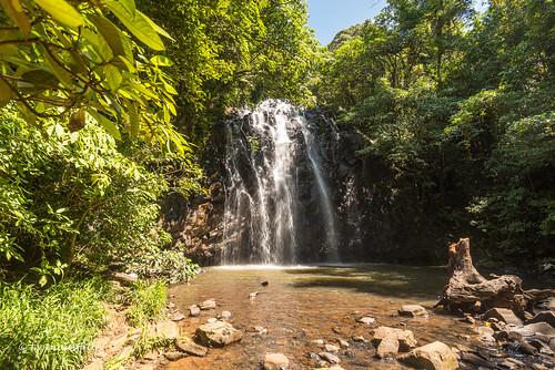 water landscape waterfall australia queensland landscapephotography millaamillaa outdoorphotography