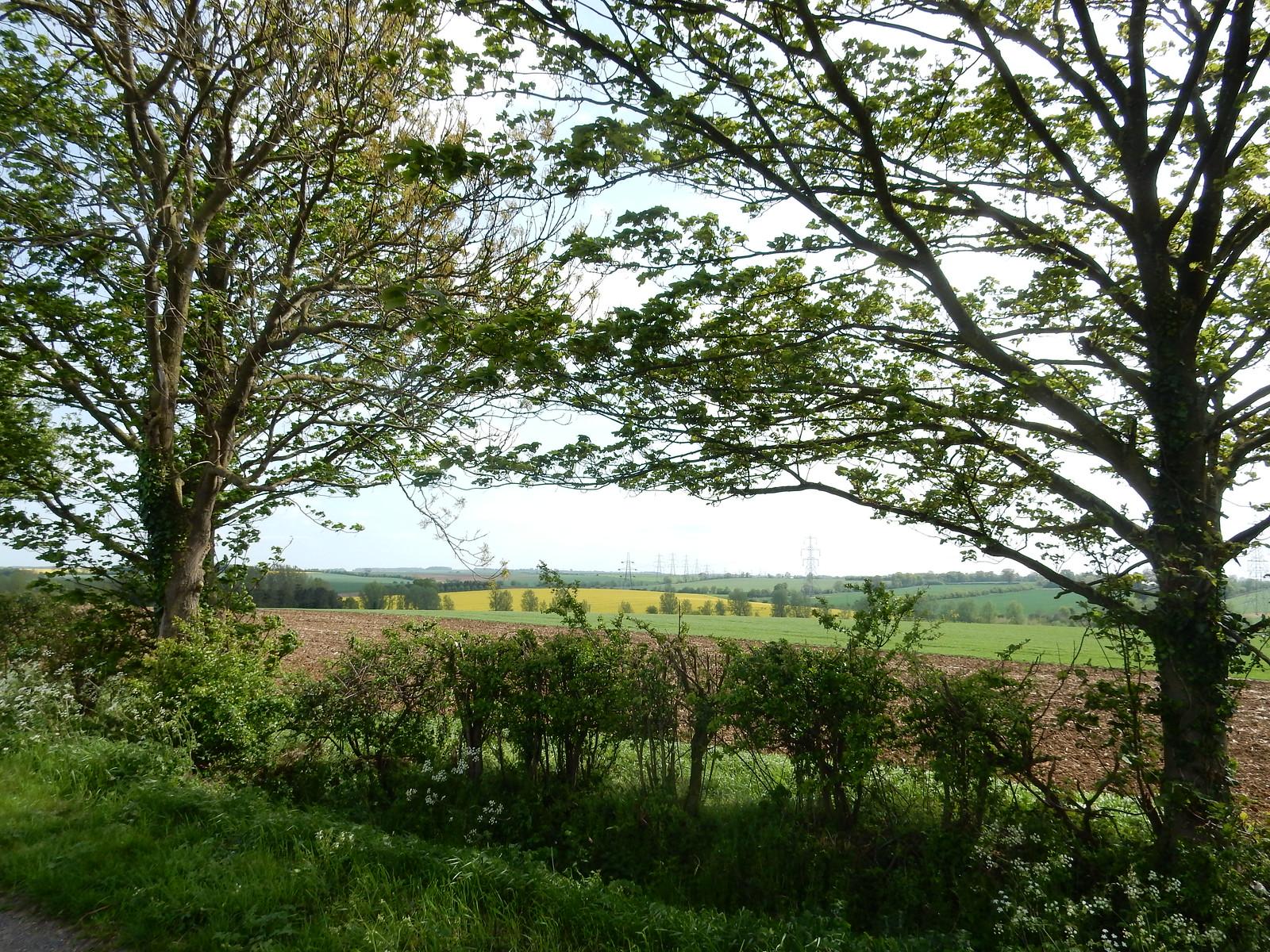 View Baldock Circular