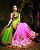 Lovely Green & Pink Net & Georgette Saree With Heavy Embrodered Blouse by Sapna Kumari11