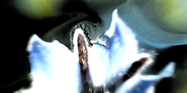 Rêve de fantôme - Ghost Dream