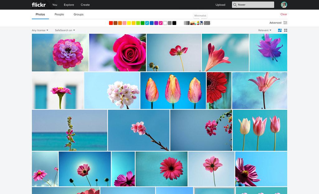 2 Color Search + Minimalist