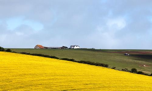 Downland Farm | by Hexagoneye Photography