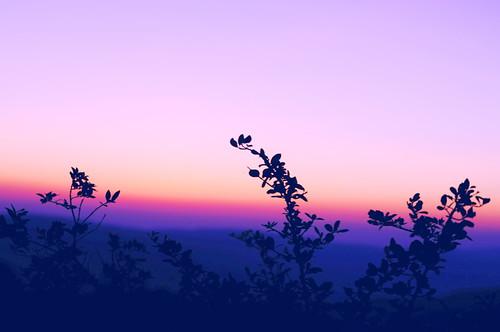 india sunrise landscape 50mm dawn nikon mahabaleshwar 50mmf18g d5000 nikond5000