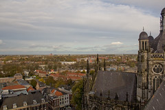 Katedral Santo Yohanes, 's-Hertogenbosch