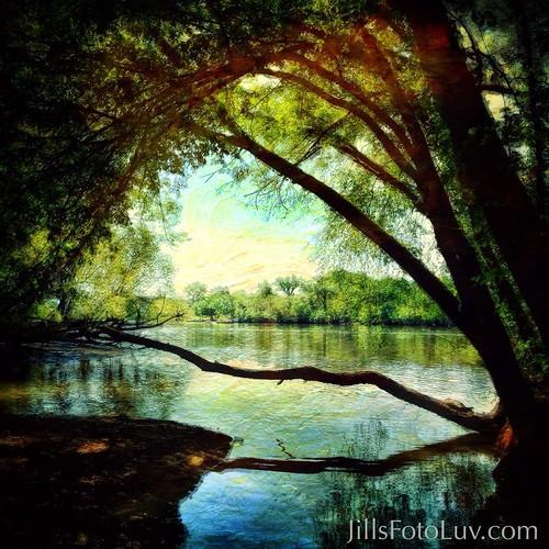 trees painterly water beautiful virginia view artistic scenic richmond rva jamesriver greatshiplockpark chapelisland