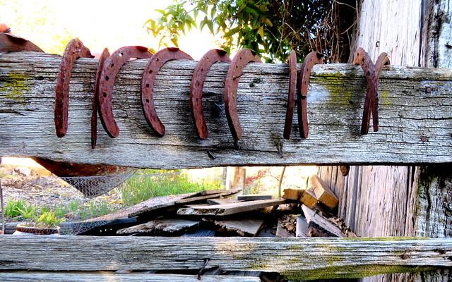 Rustic Horse Shoes