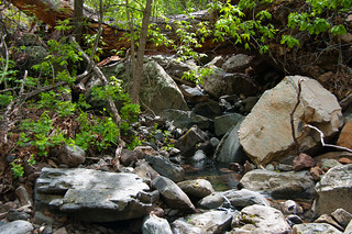 Kelsey Trail No. 3 | by deborah.soltesz