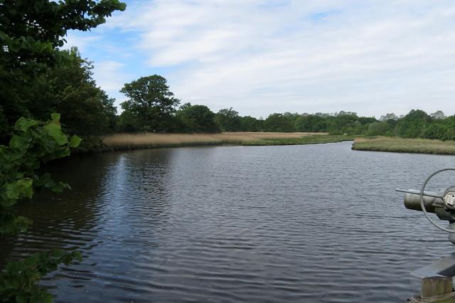 Bartley Water at Eling