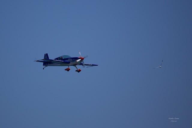 NOS Air Race Cascais 2014
