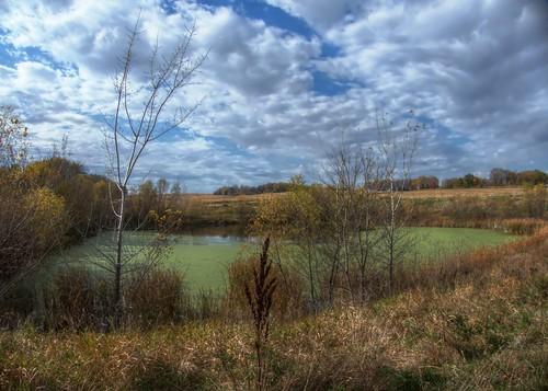fall landscape pond rochestermn