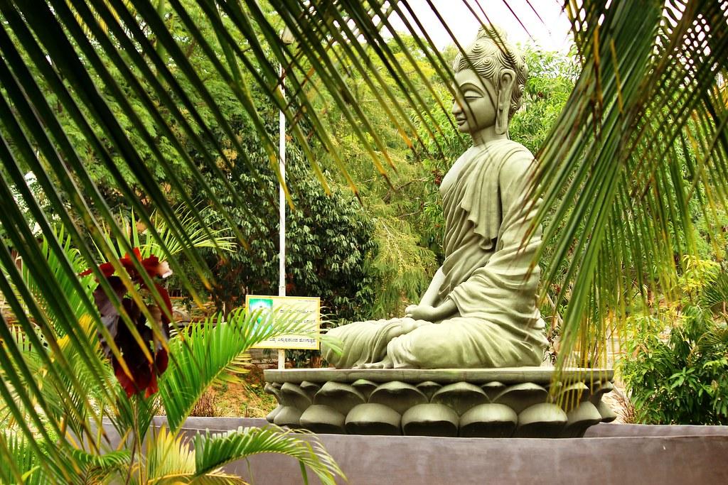 """Résultat de recherche d'images pour """"Pyramid Valley International  bangalore"""""""