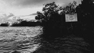 alter do chão em maio (maré alta)/PA, brasil