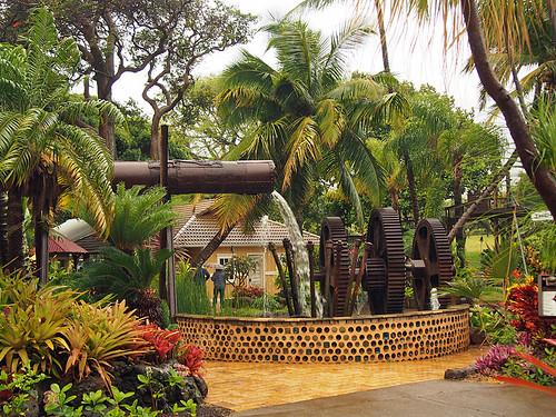 Maui- Tropical Plantation -Joe 2   by KathyCat102