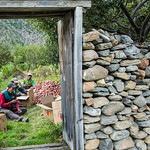 37292-042: High Mountain Agribusiness and Livelihood Improvement Project in Nepal