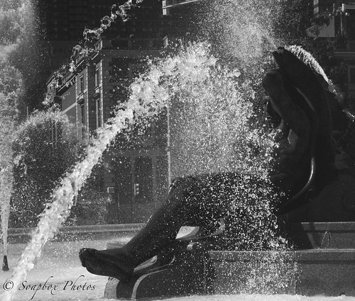 Black and White Swann Fountain | by Soapbox Girl (Carol Anne)