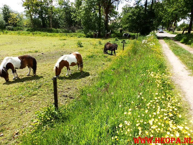2015-05-30          57e Veluwe        Wandeltocht        18 Km  (45)
