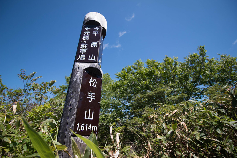 20150607-仙ノ倉山-0224.jpg