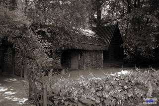 The woodshed | by www.digicrea.be