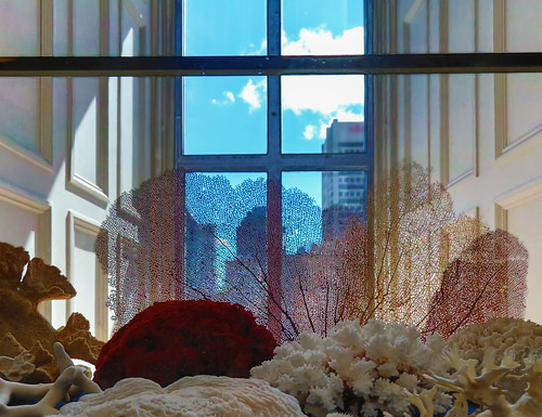 blue sky cloud window glass museum canon downtown musée bleu ciel april nuage avril fenêtre hdr centreville vitre partlycloudy redpath 2015 corail redpathmuseum muséeredpath centrevillemontréal downtonmontréal partiellementnuageux