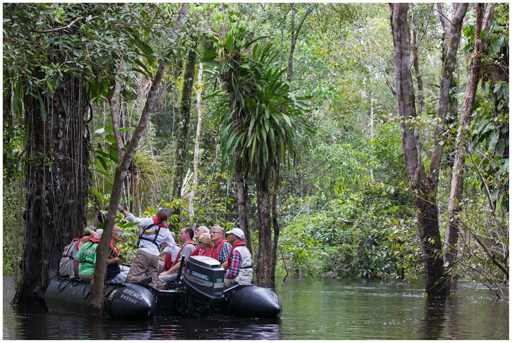 Rio Amazonas - Brazil