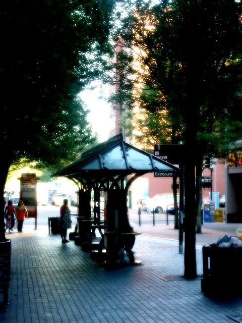 PDX Transit Mall  Dreamy