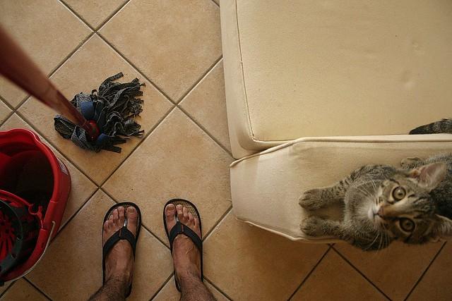 pulizie estive! :S