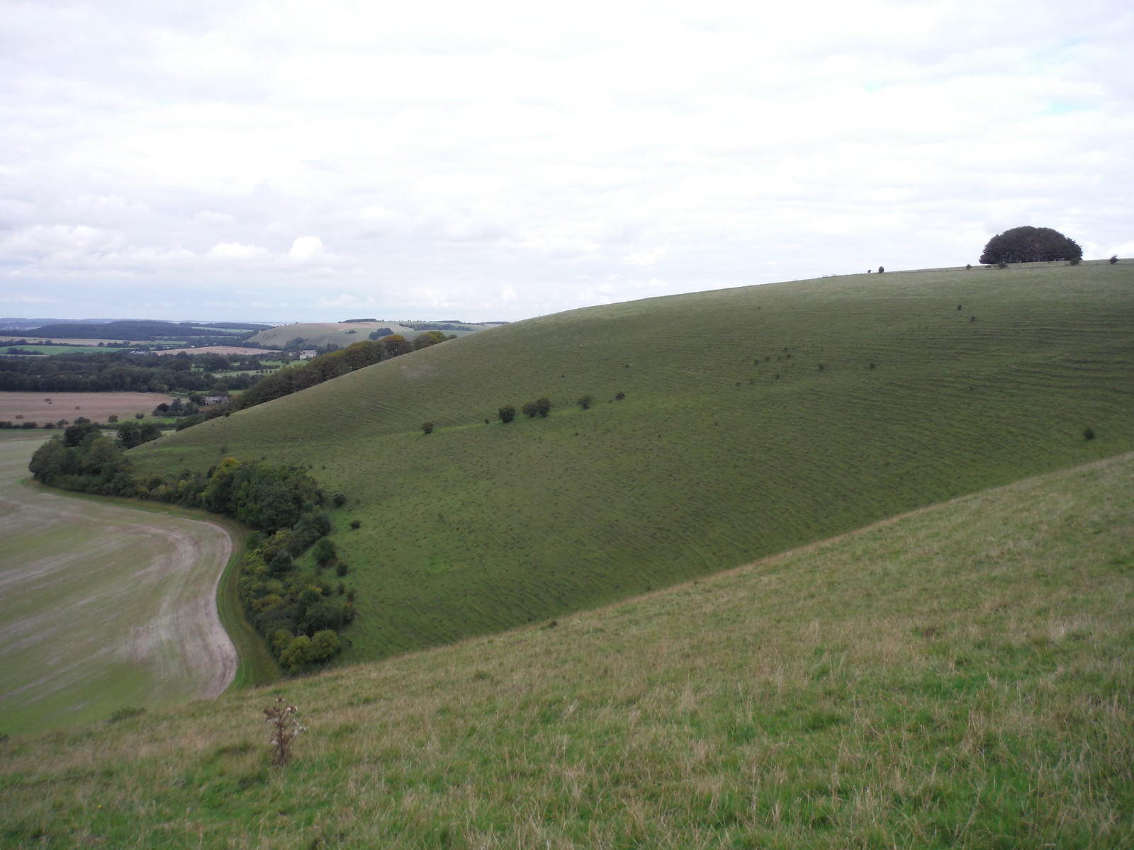 Win Green Hill SWC Walk 251 Tisbury Circular via Ludwell and Berwick St. John