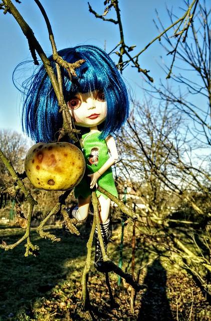 Herzchen 💖 picking the last apple in winter