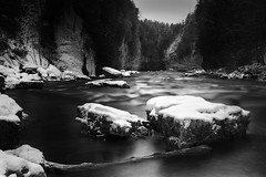 Snowy River Solitude